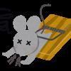 罠にかかるネズミ